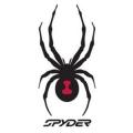 SPYDER